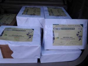 cetak sertifikat